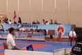 پنج داور قزوین در رقابت های کاراته وان ترکیه قضاوت کردند