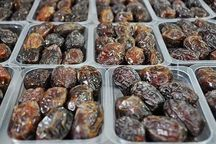 سرمایهگذاران توسعه بستهبندی خرما در بوشهر حمایت میشوند