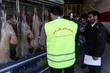 طرح نظارت بهداشتی دامپزشکی در جنوب کرمان آغاز شد