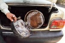 کشف 19 کیلوگرم تریاک از خودروی پراید در قزوین