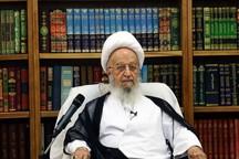 آیت الله مکارم شیرازی: مرجعیت حذف شدنی نیست
