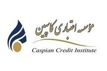 محاسبه سود مؤسسه کاسپین به صورت علیالحساب
