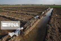 ۶۰ درصد کانالهای آبیاری خراسان شمالی خاکی است