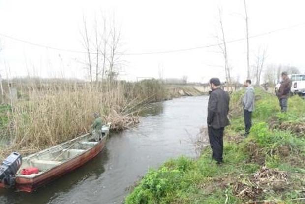 جمع آوری  دام های زیر آبی  در لنگرود