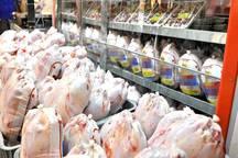 توزیع اقلام پروتئینی در جنوب کرمان 30 درصد افزایش یافت