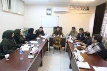 بهره برداری از 45 طرح بهزیستی گلستان در دهه فجر