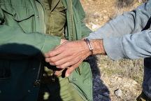 دستگیر 2 شکارچی غیر مجاز در نطنز