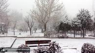 بارش برف و باران در راه ایران