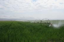 3 هزار هکتار اراضی سربیشه مجهز به آبیاری نوین است