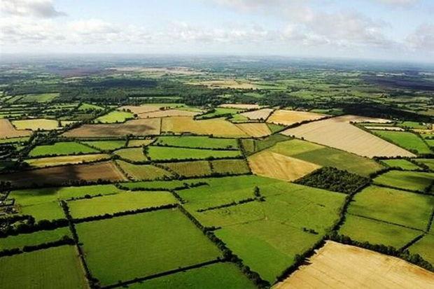 ۴۵۰ هزار هکتار زمین کشاورزی در آذربایجانغربی نقشه کاداستر دارد