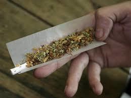 گل؛ مواد مخدری که خیلی طرفدار دارد/ اعتیاد آور نیست؟