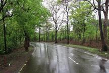باران هوای مازندران را 12درجه سرد کرد