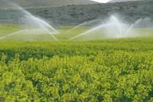 بزرگترین طرح آبیاری نوین تحت فشار استان بوشهر در دشتی افتتاح شد