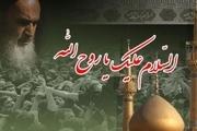 سی امین سالگرد رحلت امام خمینی (ره) بسیار ویژه برگزار شود
