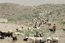 خسارت عشایر از خشکسالی و سیل نگرانکننده نیست