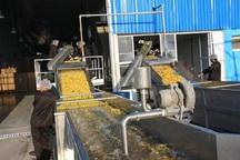 صدور مجوز بهره برداری برای 100 واحد تبدیلی کشاورزی آذربایجان غربی در دولت یازدهم