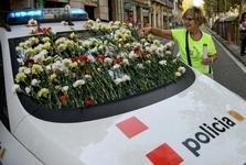 ماشین پلیس گل زده+ عکس