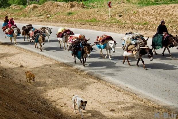 10 میلیارد ریال برای عمران عشایری آذربایجان غربی اختصاص یافت