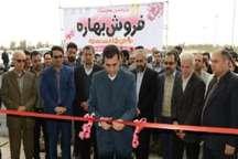 نمایشگاه فروش بهاره در گرگان آغاز به کار کرد
