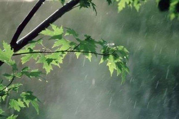 میانگین بارش در زنجان سه درصد کاهش یافته است