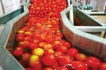 فرآوری200 هزار تن محصولات خام کشاورزی و دامی در چهارمحال و بختیاری