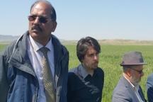 وزارت جهاد کشاورزی با  فائو قرارداد همکاری امضا می کند
