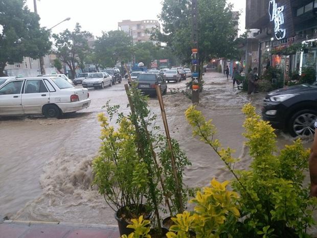 بارندگی بهاره در بوکان 15 افزایش یافت