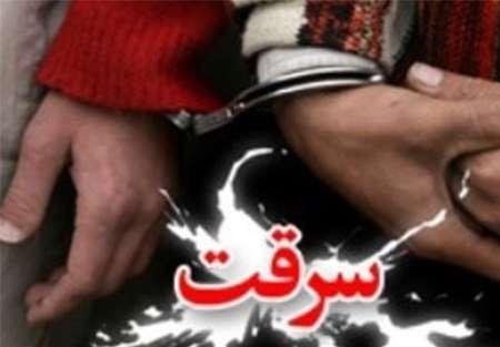 دستگیری اعضای باند سرقت دام های عشایردربروجرد