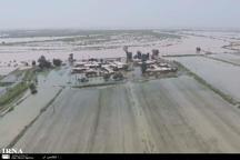 سیلاب 16 هزار میلیارد ریال به کشت و صنعت دهخدا خسارت زد