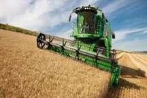 نوسازی ناوگان کشاورزی عمر22 درصد از کمباین های گلستان زیر 13سال است