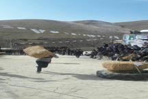 جشنواره بازی های بومی و محلی در فاروج برگزار شد