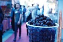 به نام جشنواره به کام بازارچه