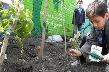 اجرای طرح هر مدرسه یک نهالستان در شهرستان شهریار