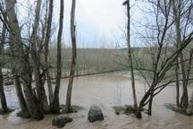آبگرفتگی های اطراف اردبیل و نیر خسارات چشمگیر ندارد