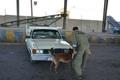 2 سوداگر مرگ در قزوین دستگیر شدند