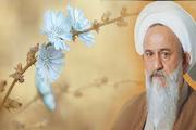 سالگرد ارتحال آیت الله صالحی مازندرانی در قائمشهر برگزارشد