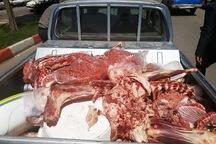 500کیلوگرم گوشت فاسد در الیگودرز امحاء شد