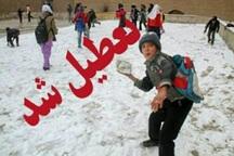 سرما و یخبندان مدارس برخی مناطق لرستان را به تعطیلی کشاند