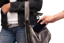 رعایت نکات ایمنی در ایام پایانی سال از سرقت پیشگیری می کند