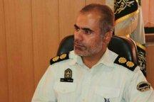 هفت سارق شهرستان دشتستان دستگیر شدند