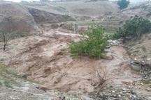 سیل راه 85 روستای دیشموک را مسدود کرد