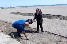 سازمان های مردم نهاد نوار ساحلی آستارا را پاکسازی کردند