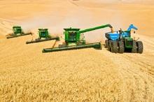 360 میلیارد ریال وام به کشاورزان کهگیلویه و بویراحمد پرداخت