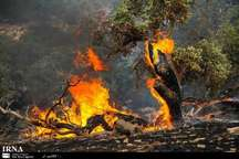 اعزام بالگرد به جنگل های شعله ور اندیمشک