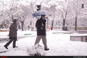 ورزقان سردترین شهر ایران  اختلاف 45 درجهای سردترین و گرمترین نقطه کشور