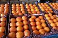 قیمت میوه  تنظیم بازار در عید نوروز اعلام شد