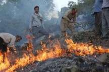 مهار آتش سوزی جنگلهای مرز بین کوهدشت و پلدختر