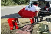 واژگونی خودرو در محور آستارا - اردبیل، 2 کشته و سه مصدوم بر جا گذاشت
