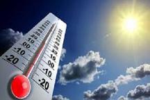 طارم دمای 44 درجه را ثبت کرد
