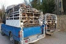 2خودروی حامل چوب درختان بلوط در یاسوج توقیف شد